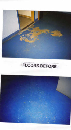 eagle floors before