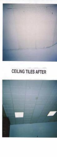 eagle ceiling tiles after